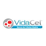 VIDACEL